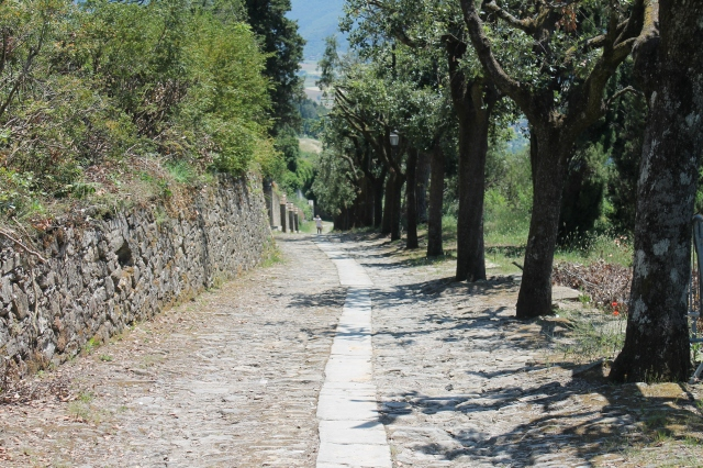 The path leading from Cortona to the church of Saint Margareta