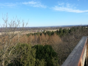 The view from the deck