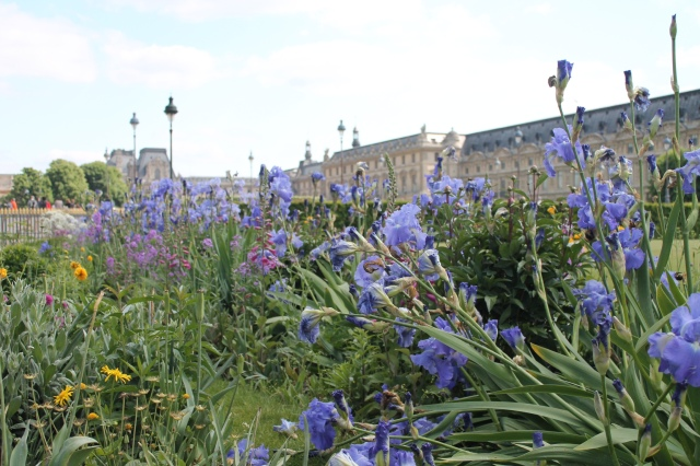 Flowers and the view of the Louvre