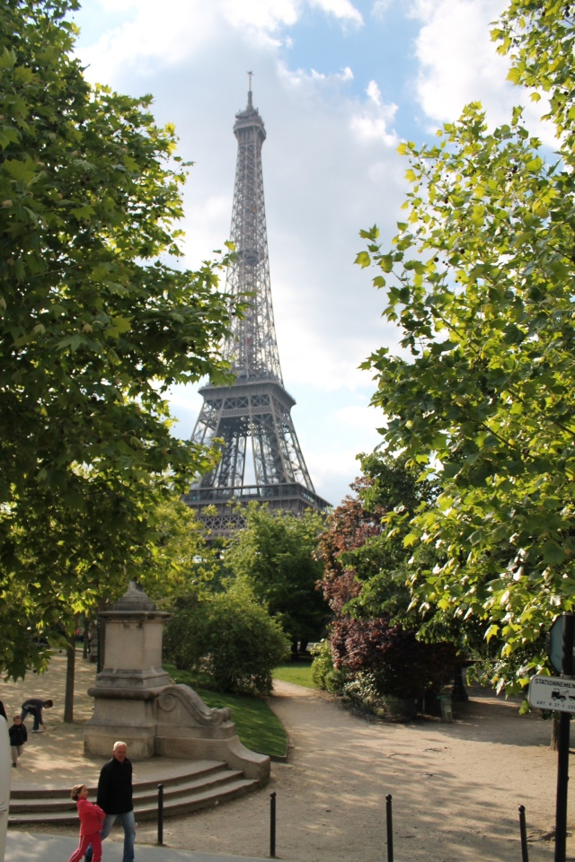 Spring in paris with the Eiffel tower towering.