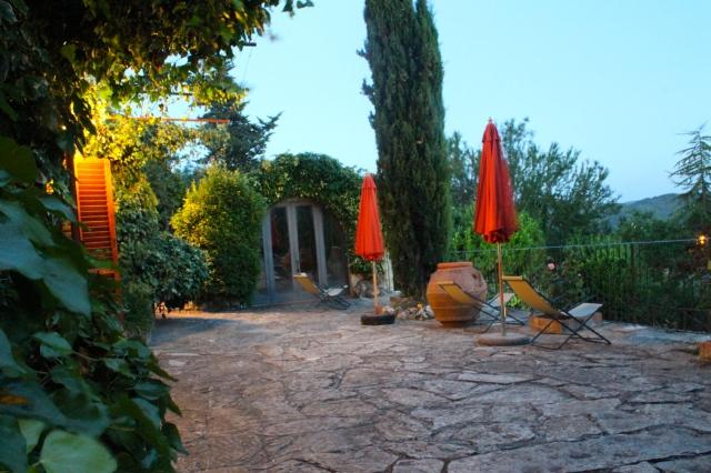 campo agli olivi